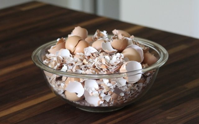 Nothing goes to waste!  Eggshells included…